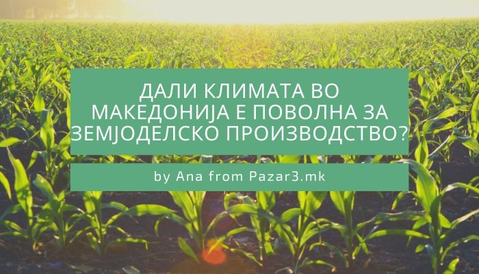 Дали климата во Македонија е поволна за земјоделско производство?